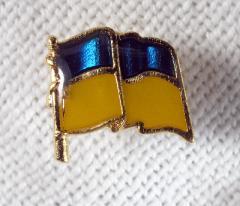 Ukrainian Flag badge, Ukrainian souvenir