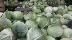The farm implements cabbage 2 grades