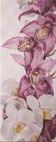 Плитка Sote Orhideya 200*500