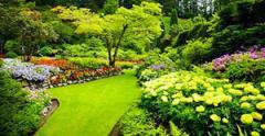Gardening of a garden.