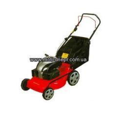 Petrol lawn-mower of WARRIOR WR 65135