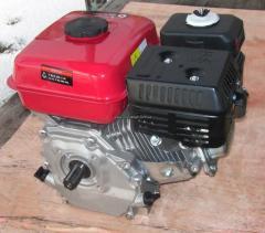 BULAT BT170F-T (gasoline 7,5l.s.)