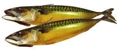 Скумбрия холодного копчения. Рыба копчёная.