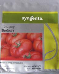 Семена томата Бобкат F1 дет. Syngenta...