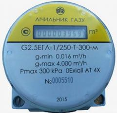 Compact gas meter with the electronic calculating