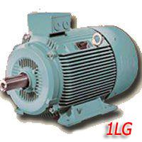 Электродвигатели Siemens типа 1LG