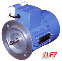 Siemens electric motors of type 1LF7