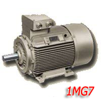 Siemens electric motors of type 1MG7