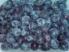 The bilberry frozen by wholesale (bag box)