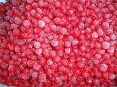 The cowberry frozen (bag box)