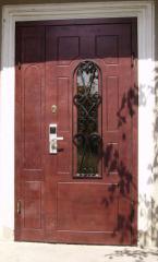 Двери металлические с декоративной отделкой