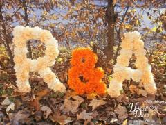 Letters from pompons, paper flowers. A paper decor