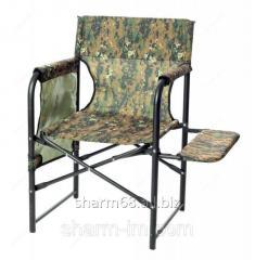 Chair director's folding