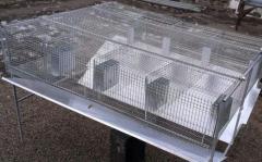 Клетки для кроликов металлические