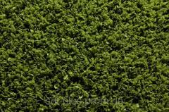 Искусственная трава JutaGrass FastTrack 18