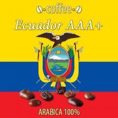 AAA Ecuador coffee + (Coffee Ecuador AAA +)