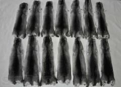 Skins of chinchillas, fur of chinchillas.