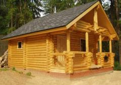 Sauna from a felling from the producer Ukraine