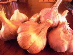 Food commodity Cofiyevsky GARLIC