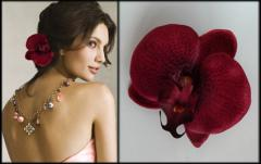 Hairpins for hair with orchids.