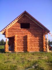 Wooden houses wild felling Ukraine