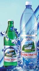 Воды минеральные лечебно-столовые   Поляна