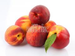 Закупка персиков,  Персик