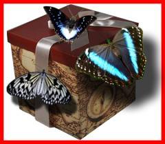 Живые тропические бабочки, салют из живых