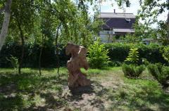 Камені для дизайну саду