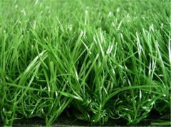 Shtuchna of a komb_novan a grass for a football