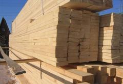 Board cut 1 grade wholesale Ukraine Poland FRN