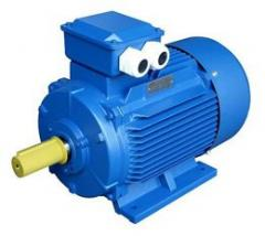 ACORUS electric motor 100 L2