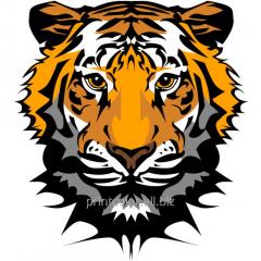 Vinyl sticker Tiger