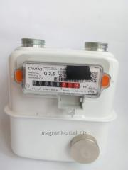 Correct Counter of Elster BK-G4T gas
