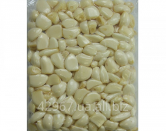 The peeled crude garlic