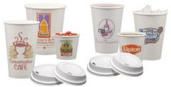 Disposable tableware under drawing, wholesale from