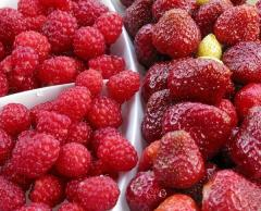 Strawberry, raspberry fresh (berries)