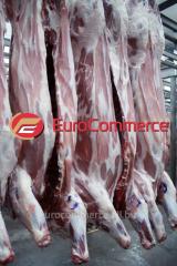La carne de cerdo en las semifanfarrias
