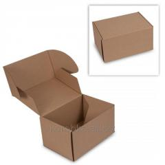 Transport packaging for delivery