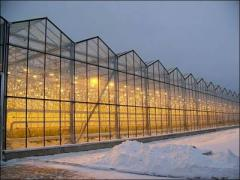 Industrial greenhouses from polycarbonate