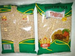 Grain from wheat Samriz of 1 kg