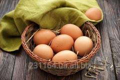 Яйце дієтичне