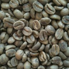 Кофе зеленый в зернах (сырой) Бразилия Сантос