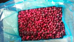 Berry cranberry Canada frozen