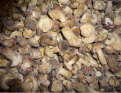 Boletus mushrooms (cube) frozen