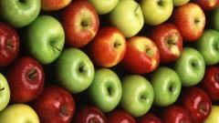 Apples fresh wholesale, expor
