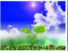 Пестициды в Украине, куплю, Черкассы