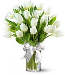 Тюльпани Білі