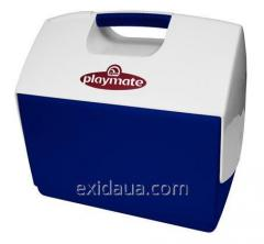 Thermally insulated container of Igloo Playmate