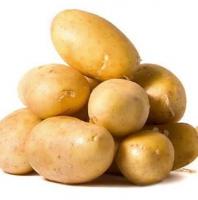 """Картофель """"Белла роза"""" оптом от"""